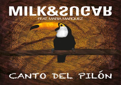 Download canto original mix marquez feat pilon del maria