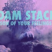 Son Of Your Feelings - Adam Stacks