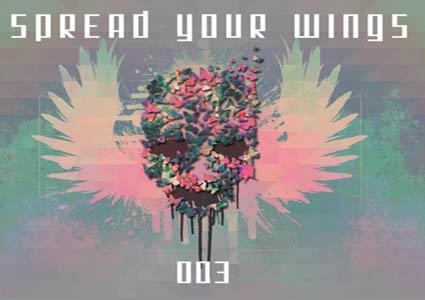 Spread Your Wings 3 - Eagles & Butterflies