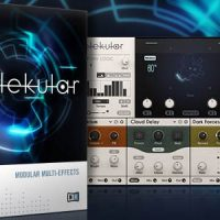 Native Instruments: Molekular
