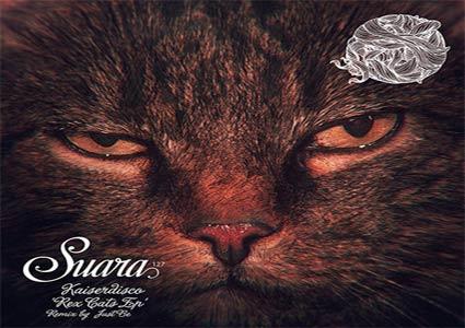 Rex Cats EP - Kaiserdisco