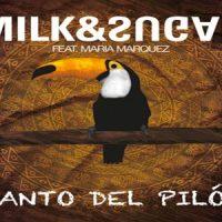 Canto Del Pilón - Milk & Sugar