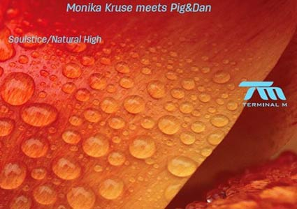 Soulstice / Natural High - Monika Kruse meets Pig&Dan