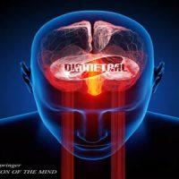 Disruption of the Mind LP - Matthias Springer