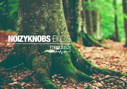 Ekos EP von Noizyknobs