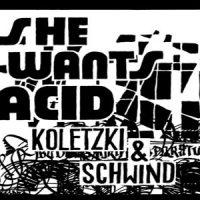 She wants Acid von Koletzki & Schwind