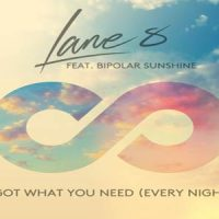 I Got What You Need - Lane 8