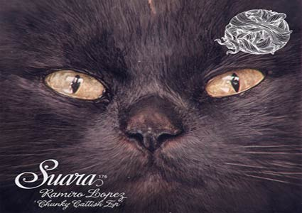 Chunky Cattish EP by Ramiro Lopez