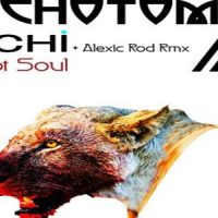 I Got Soul by Sichi