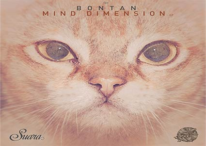 Mind Dimension EP - Bontan