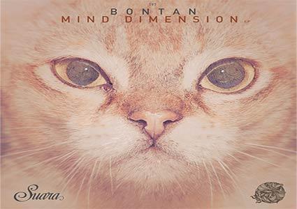 Mind Dimension EP - Bontan