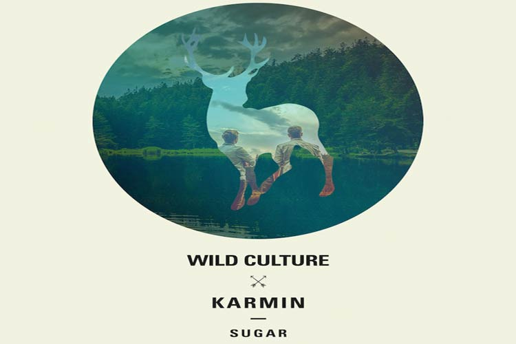 Sugar - Wild Culture Vs. Karmin