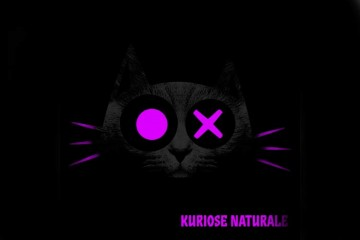 The Deal - Kuriose Naturale