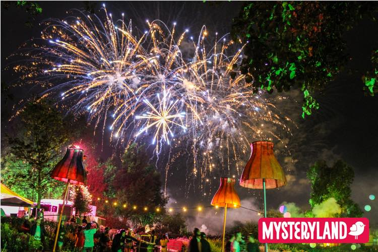 Mysteryland at Night