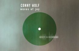 Waves of Joy Remix-EP - Conny Wolf