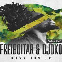 Down Low EP - Freiboitar & Djoko