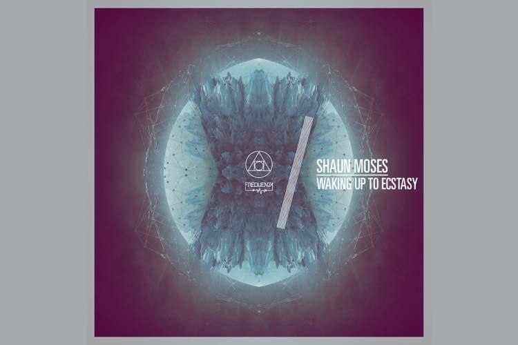 Waking up to Ecstasy - Shaun Moses