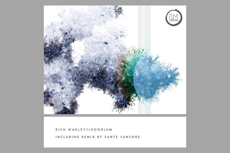 Hoodlum EP - Rich Wakley