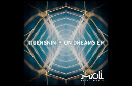 On Dreams EP - Tigerskin