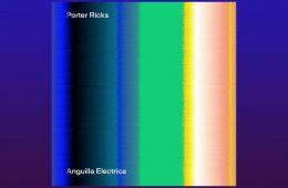 Anguilla Electrica LP - Porter Ricks