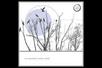 Soma Drop EP - Salamanda