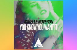 You Know You Want It - Mirelle Noveron
