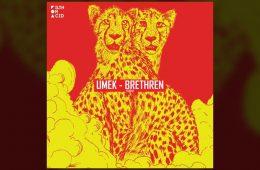Brethen EP - Umek